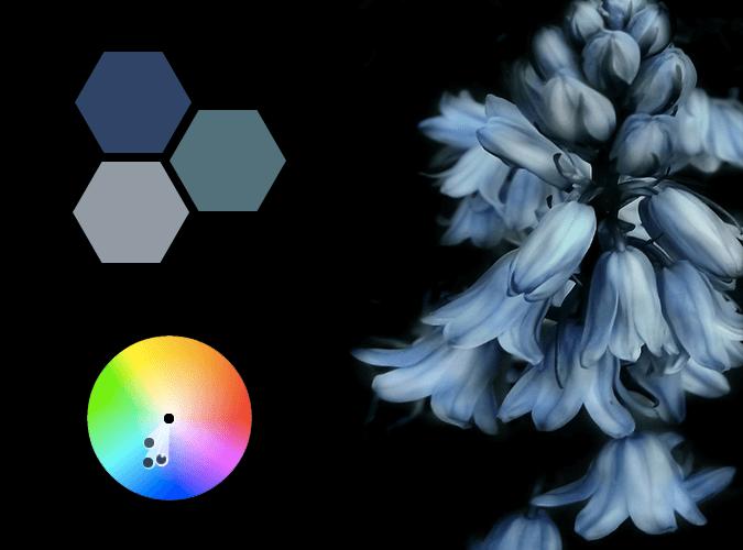 high-key analogous colors