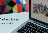 WordPress is Easy, but not really