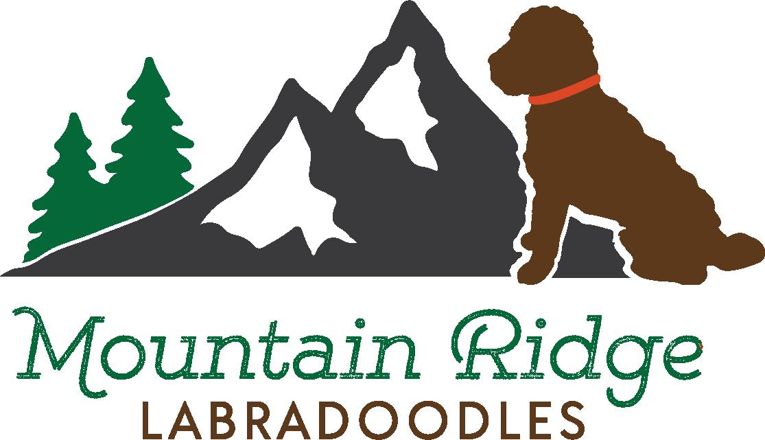 https://mk0sumydesignssu4248.kinstacdn.com/wp-content/uploads/2020/11/Mountain_Ridge_Color@2x.png