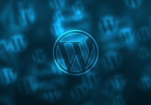 custom wordpress design service