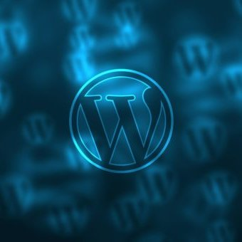 custom wordpress design service