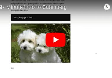 Gutenberg Tutorial Video