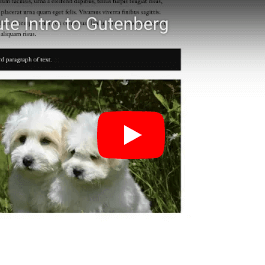 Gutenberg Tutorial Video